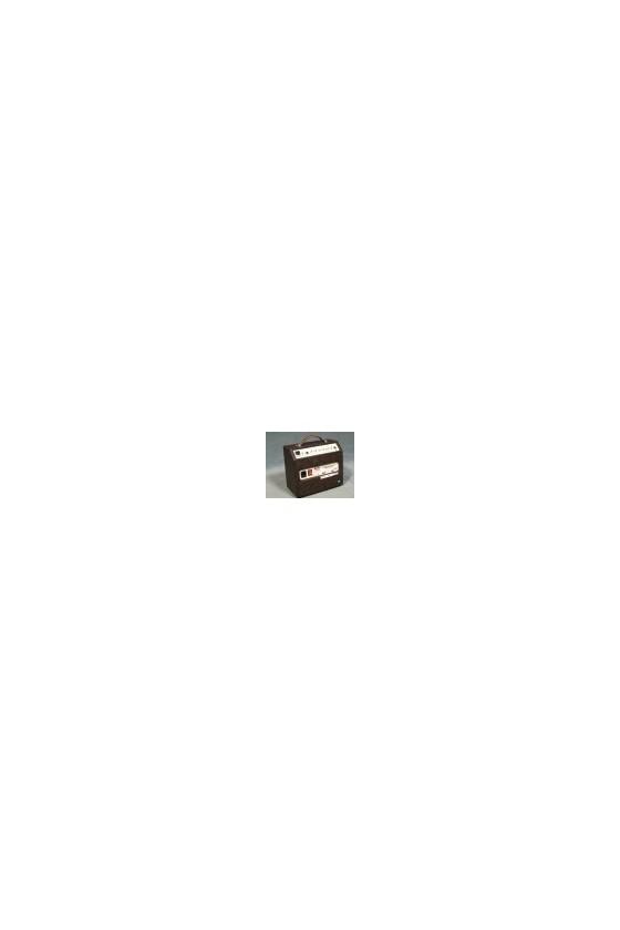 Woodsman Parlour Amplifier By Ashdown Acoustic