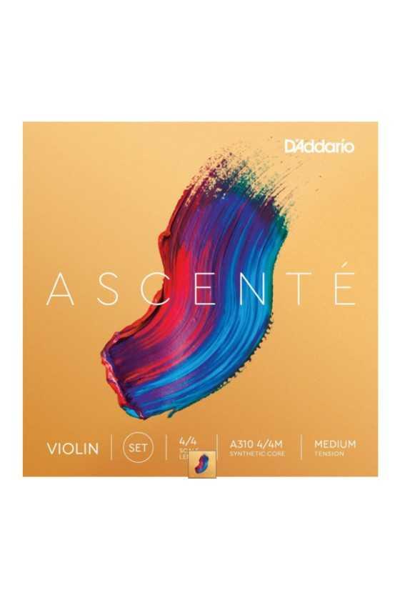 Ascente Violin G String