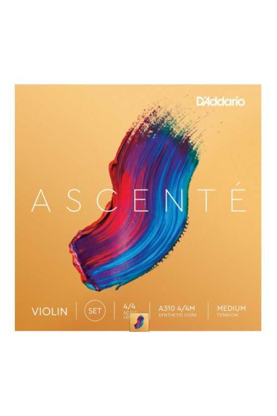 Ascente Violin D String