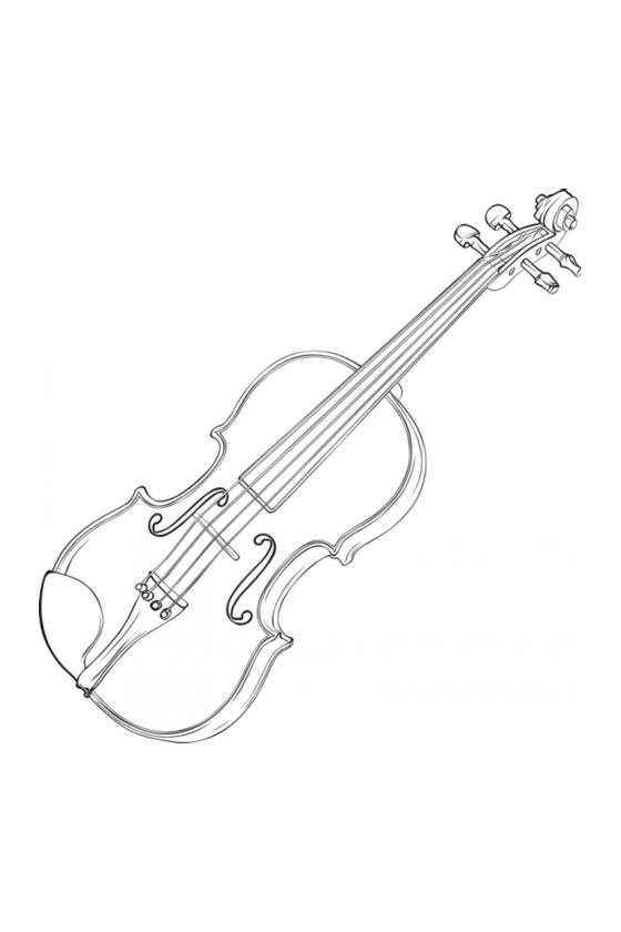 Animato Second-hand violin...