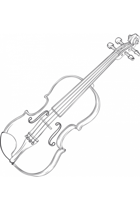 Animato Second-Hand Small Viola