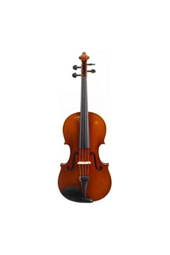 Samuel Eastman VA80 Viola
