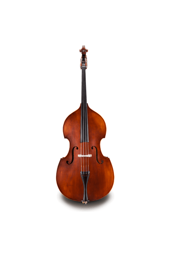 Andreas Eastman VB105 Double Bass with Sold Top an Sold Back