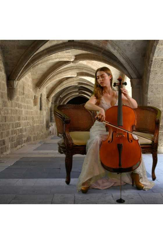 Gliga Vasile Advanced Cello