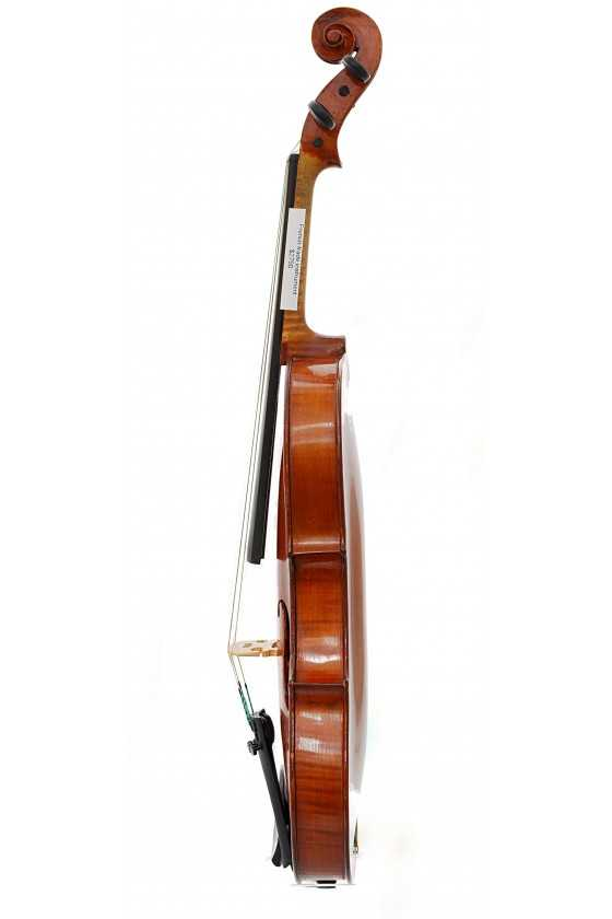 French Trade Violin Instrument