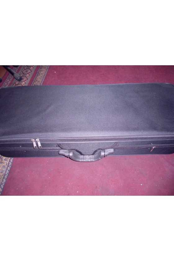 Animato Viola Oblong Case