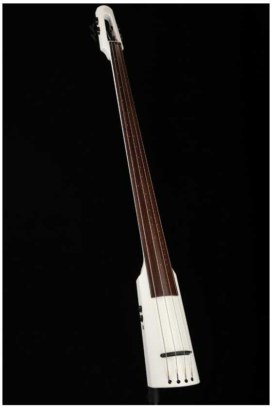 NS Design WAV4 Double Bass
