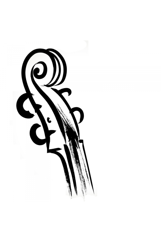 Second-Hand Cello