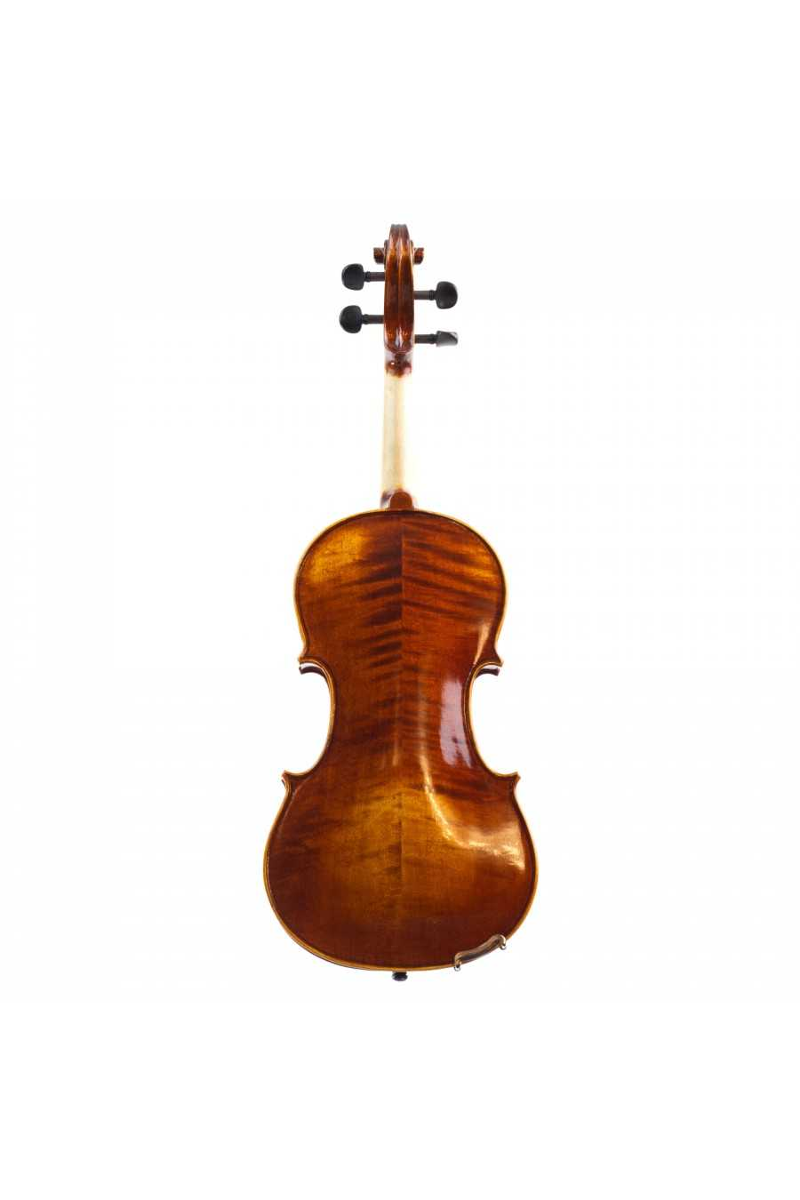 "Capriccio Viola 12""-14"" Back"