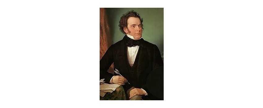 Viola Compositions of Franz Schubert | Animato Strings