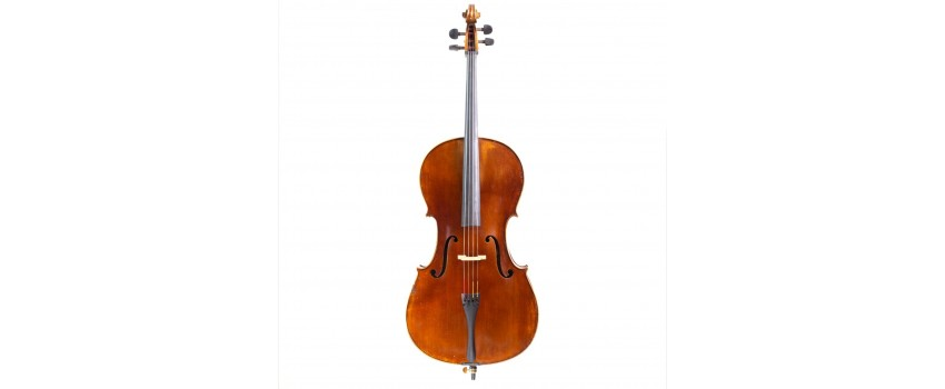 All Things Cello | Animato Strings