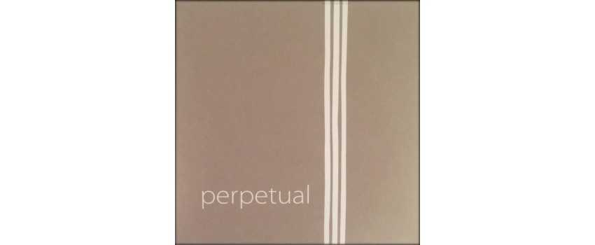 Perpetual Soloist Cello Strings | Animato Strings