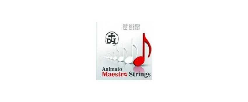 Maestro Double Bass Strings