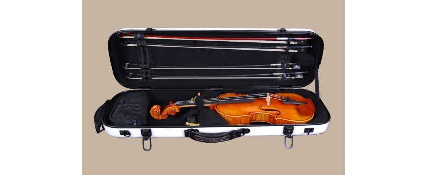 Tonareli Violin Cases | Animato Strings