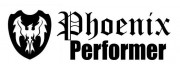 Phoenix Performer Fiberglass/Carbon Violin Cases