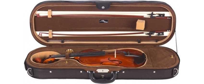 Other Violin Cases | Animato Strings
