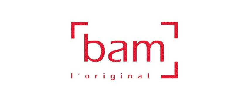 Bam Viola Cases | Animato Strings