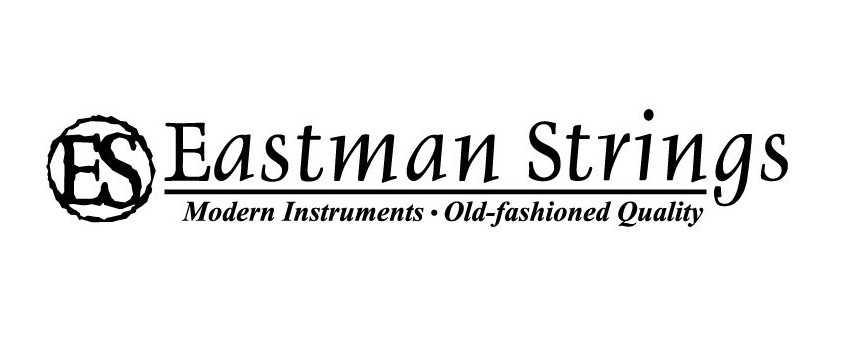 Eastman Range Of Violins | Animato Strings