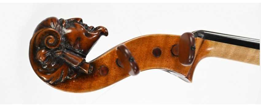 European Violas | Animato Strings