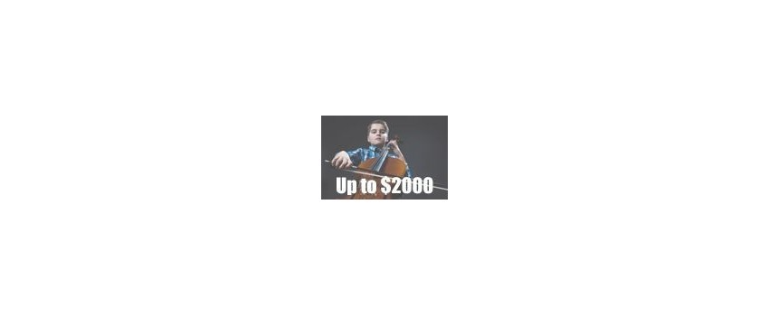 Cellos Up To $2000 | Animato Strings