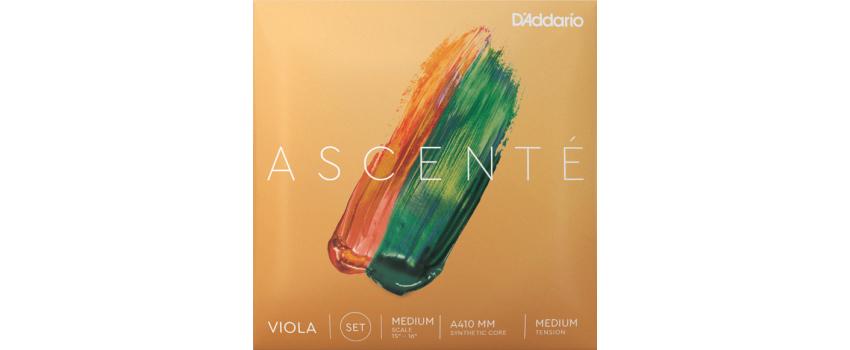 Ascente Viola Strings