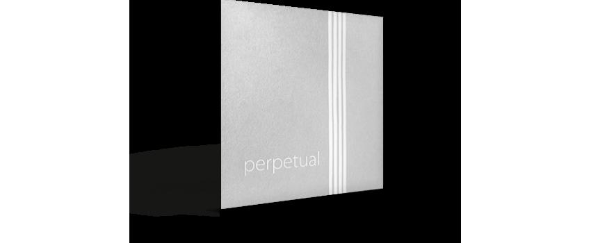 Piranito Perpetual Strings