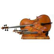 Animato Strings Shop Gallery